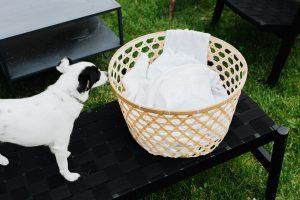 Roterende waslijnen voor wasgoed